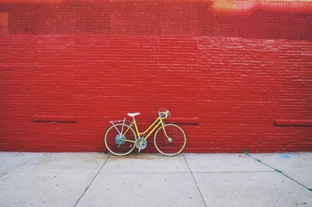 art, photography, brooklyn, artist